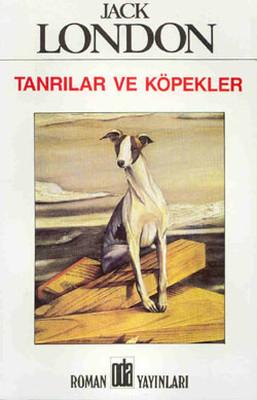 Tanrılar ve Köpekler Kitap Kapağı
